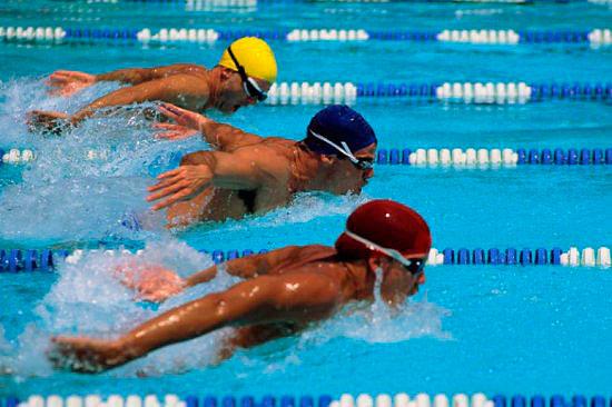 sportivnoe-plavanie