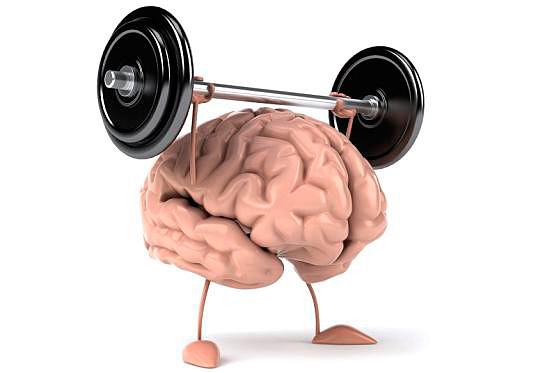 Какие продукты нужно употреблять для прокачки памяти и работы мозга?