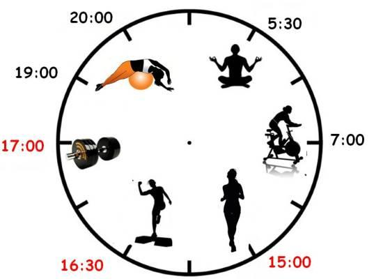 Лучшее время для тренировок у всех разное
